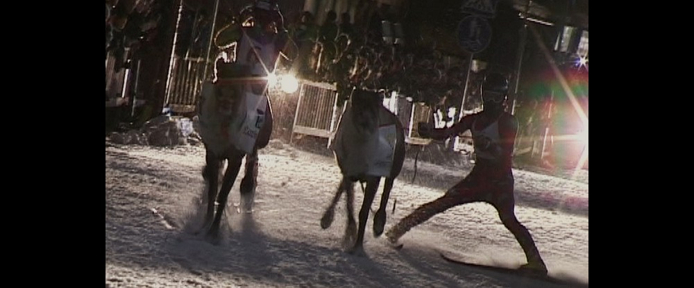 Reindeerspotting / Pako joulumaasta