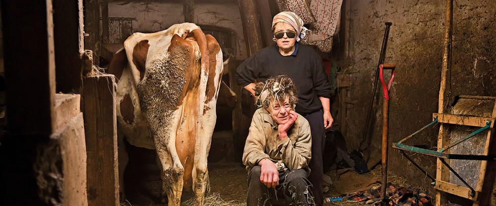 Kokvinnorna / Women with Cows